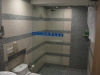 bathroom-and-shower-area